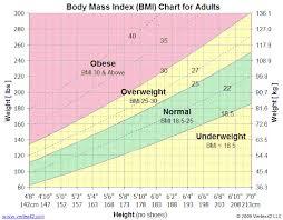 Are You Obese Chart Bmi Calculator 5280 Health