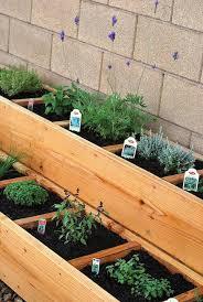 outdoor herb garden. Hanging Bottle Herb Garden Outdoor