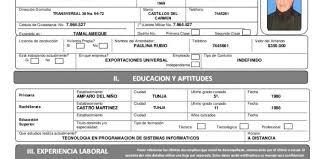 Curriculum Vitae Formato Minerva 10 00