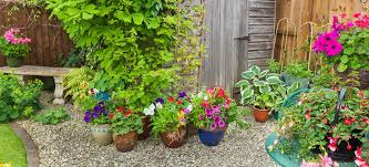 container gardening ideas that will turn your outdoor space into an oasis
