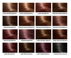 Human Hair Color Ring Chart For Black Women High Temperature