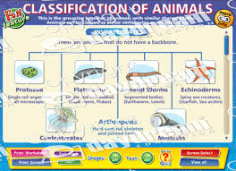Classification Of Animals Interactive Software Download
