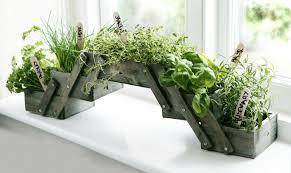 Wooden Herb Planter Kit Seeds Kitchen Window Box Pot Indoor Ebay. view ...