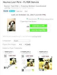 Dog Flyer Template Free Lost Dog Flyer Template Kaleidoscop Info