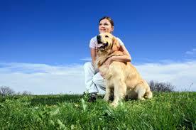 Reflexology For Pets Wellbeing Com Au