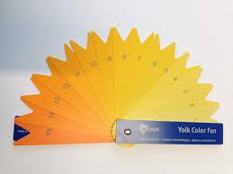 Egg Yolk Colour Chart Why Does Yolk Colour Vary Riverina