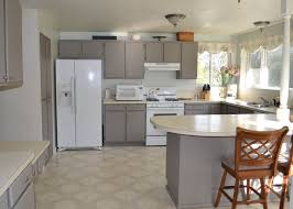 ideas painting kitchen cabinets trellis special paint cabinet kit inside repainting cupboard doors get painted what