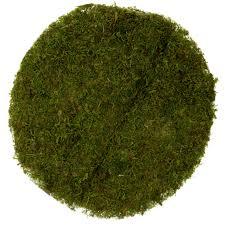 Moss Mats