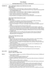 Download Operations Process Manager Resume Sample as Image file