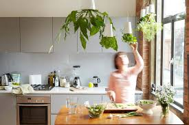Amazing Kitchen With Floating Indoor Vegetable Plants