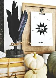 269 best feathers for home decor images