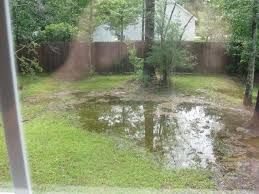 Drainage In Backyard