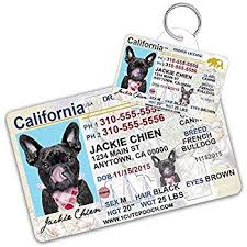 Pets California And Tag Id Wallet For Personalized com Card Dog Pet Amazon Dogs License Cats Custom Tags Supplies Driver - Cat