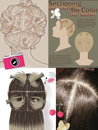 How To Section Your Hair Before