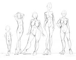 Body_Shapes___Practice_by_tabbykat 108 best images about concept art on pinterest beauty and the on young anime girl template