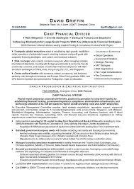It Director Resume Sample Samples Program Finance Manager Opera