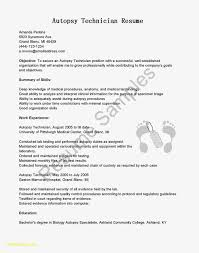 Simple Resume Template Download Fresh Word Resume Samples Download ...