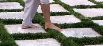 patio stones with grass in between. Perfect Stones Plants For Use Between Stepping Stones And Pavers Inside Patio With Grass In R