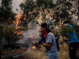Fundraiser by Paloma Caro : Help to fight Forest Fires in CHILE