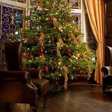 Buy 5 Ft. Fraser Fir Christmas Tree with Lights (New Orleans area only