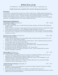 Examples Of Marketing Resumes Marketing Executive Resume Example
