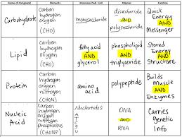 61 Punctilious Molecules Chart