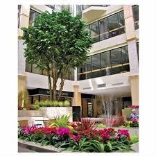interior landscaping office. Landscape For Corporate Area Interior Landscaping Office