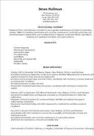Entry Level Job Resume Examples Resume Entry Rome Fontanacountryinn Com