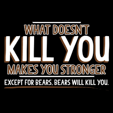 Make You Shirt What Doesnt Kill You Makes You Stronger Except For Bears Bears