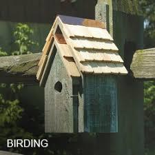 exterior homescapes. birding exterior homescapes