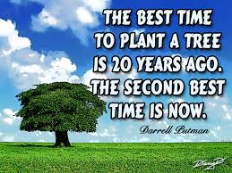 Quotes About Plant A Tree 116 Quotes