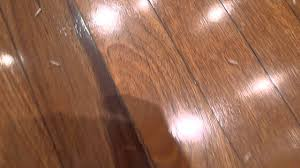 Maggots On Kitchen Floor Maggots On Floor Of Kitchen Youtube