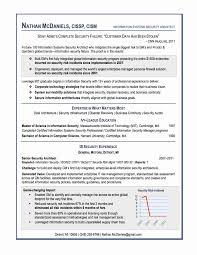 Resume Formats Examples Good Resume format New Best Resume format Examples Examples Of 49