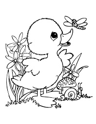 Small Picture Coloring Pages Duck For Preschoolers Toddlers Kids Printable Baby
