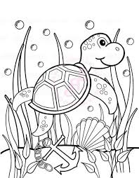 Small Picture Under the sea coloring pages sea turtle anchor seaweeds ColoringStar