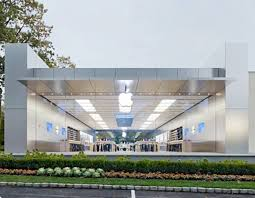 woman sues apple after walking into one