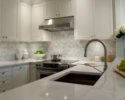 white granite countertops transitional