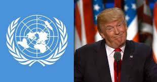 Image result for trump united nations