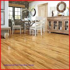 laminate flooring around toilet moisture barrier for laminate flooring over concrete flooring guide inspiration of of