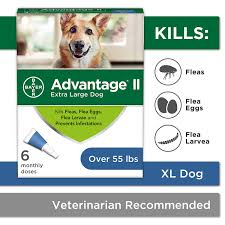 Advantage Ii Dosage Chart For Cats Bayer Advantage Ii Flea And Lice Treatment For X Large Dogs Over 55 Lbs
