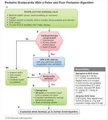 Pulmcrit Epinephrine Vs Atropine For Bradycardic Periarrest