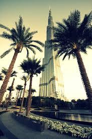 palm trees tumblr vertical. Palm Trees Tumblr Vertical