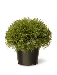 Outdoor Decor Company National Tree Company 15 Inch Juniper Bush With Pot Stage Stores