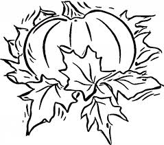 Small Picture Free Printable Pumpkin Coloring Pages For Kids Blank Pictures To