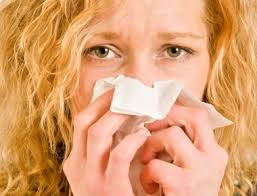 The Ugly Truth About Summer Allergies | The Ugly Truth About Summer ...