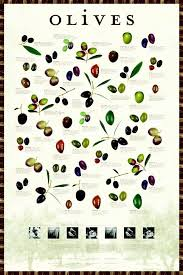 Pin By Şule Çimtosun On Sultannas In 2019 Olive Oil