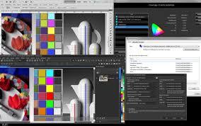 Animaux Dessin Imprimer Prefix Taureau Coloriage X Dessin Toro