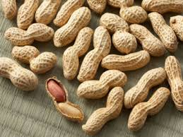 Image result for kacang tanah