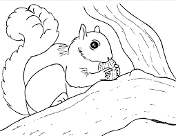 Squirrel Coloring Pages Free Squirrel Coloring Page Fresh Free