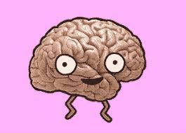 Картинки по запросу мозг картинки